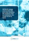 Vista preliminar de documento Informe sobre las causas del elevado número de muertes por la pandemia del COVID-19 en el Perú