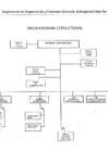 Vista preliminar de documento Organigrama