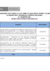 Vista preliminar de documento Ejecución de Proyectos e Inversiones con Cargo a la Ley 27889