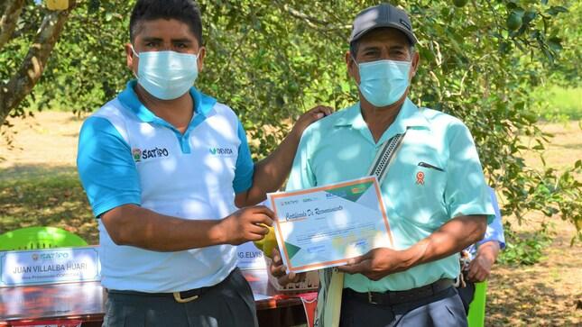 Gobierno Local y Senasa reducen incidencia de moscas de la fruta en zonas citrícolas de Satipo