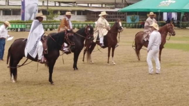 Embajada del Perú en Honduras entrega premio Bicentenario en el concurso de caballos peruanos de paso en San Pedro Sula