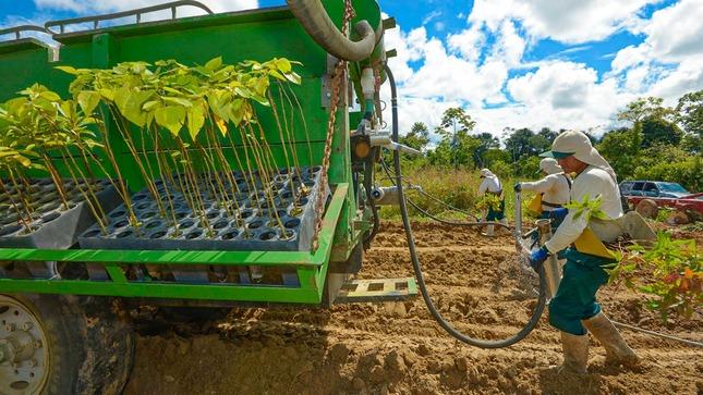 Gobierno inyectará S/ 3 mil millones al Fondo FAE AGRO