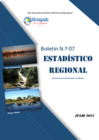 Vista preliminar de documento Boletin Estadistico Regional N° 07 - 2021