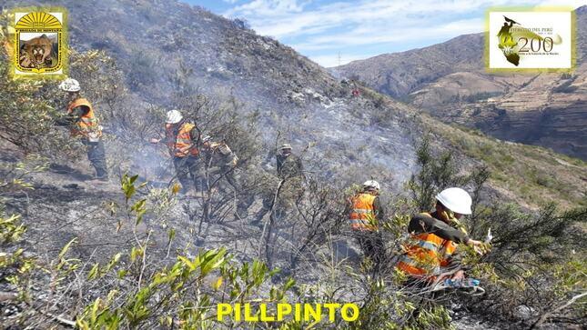 Cusco: Ejército colabora con la sofocación de incendios forestales