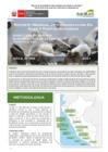 Vista preliminar de documento Reporte Mensual De Conservación En Islas Y Puntas Guaneras - Agosto 2021