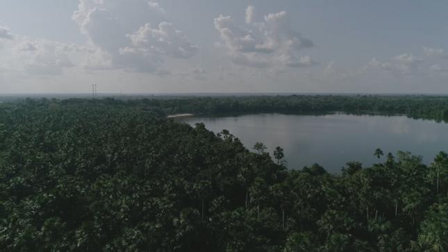 Turberas de Loreto almacenan más de 3000 millones de toneladas de carbono