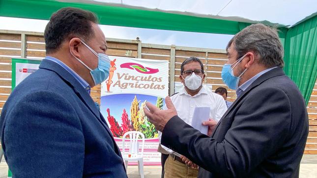 Quinua orgánica peruana sigue consolidando su presencia en el mercado europeo