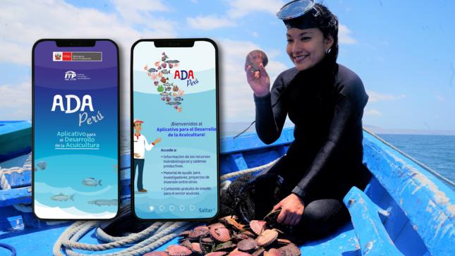 ITP red CITE lanza plan de negocios de concha de abanico y primer aplicativo móvil para el desarrollo de la acuicultura