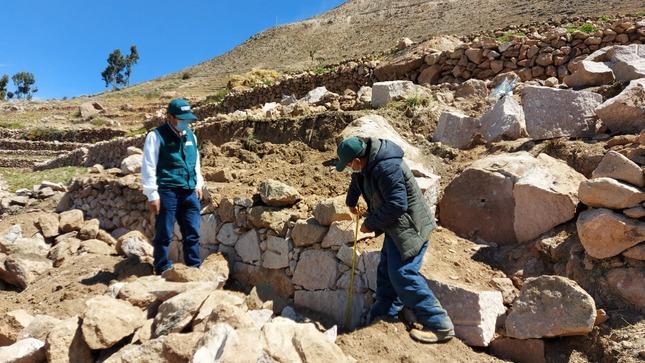 Tacna: Rehabilitan andenes en mal estado para convertirlos en suelos agrícolas de alta productividad