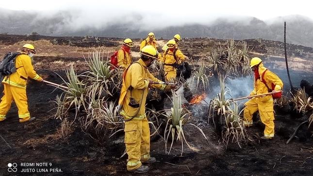 Guardaparques bomberos forestales del Sernanp se movilizaron para liquidar incendio en Cusco