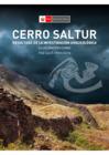 Vista preliminar de documento Cerro Saltur