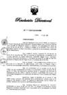 Vista preliminar de documento Designación encargarda portal transparencia