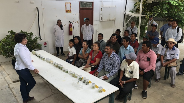 Productores de Aloe Vera y Chía se capacitan para acceder al mercado y convertirse en agroexportadores