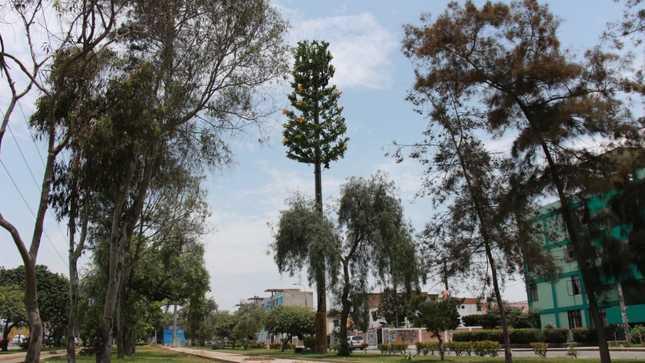 Las empresas que instalen antenas en áreas verdes estarán obligadas a mimetizarlas
