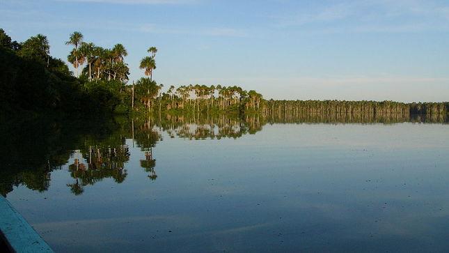 Minam: Actividad en áreas naturales protegidas de Madre Dios no se afectará con declaratoria de emergencia