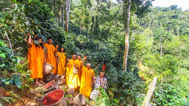Minam otorga incentivos a comunidades para la conservación de los bosques