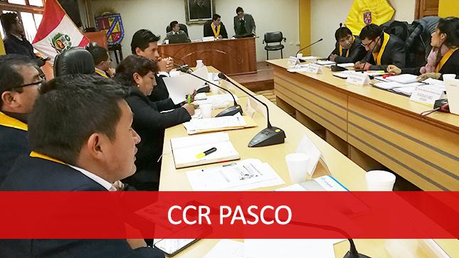 El CCR Pasco participó de la Sesión de Consejo de la Región