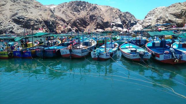 ITP red CITE brindó servicios de capacitación a más de 19 mil pescadores artesanales a nivel nacional