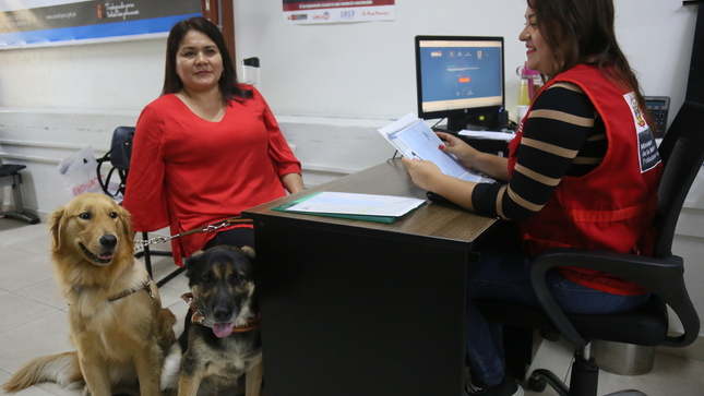 Inscripción y registro de 2 perros guías en la Sede Central del CONADIS