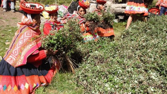 MIMP resalta ley que fortalece rol de la mujer en comunidades campesinas