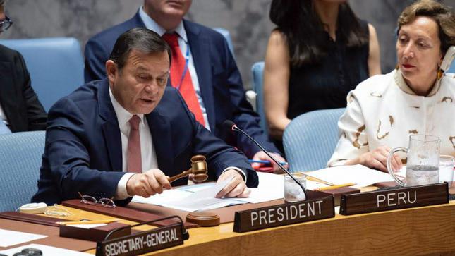 Consejo de Seguridad de la ONU adopta resolución sobre terrorismo internacional y delincuencia organizada