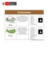 Ver informe Catálogo de bionegocios y econegocios: Ecoturismo