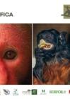 Ver informe Guía fotográfica Primates amenazados del Perú