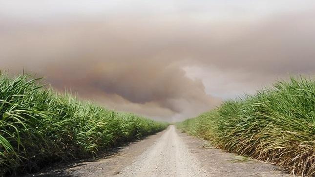 OEFA inicia supervisión ante denuncia por quema de caña de azúcar en Paita