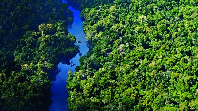 Acciones preventivas del Sector Ambiente ante la posible ocurrencia de incendios forestales