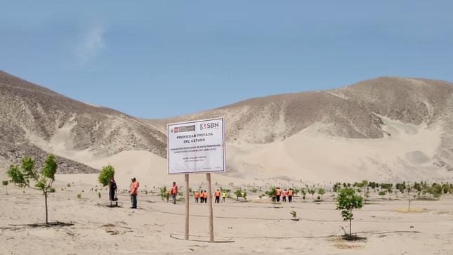 Sector Vivienda recuperó más de 300 mil metros cuadrados de terrenos del Estado en Ica
