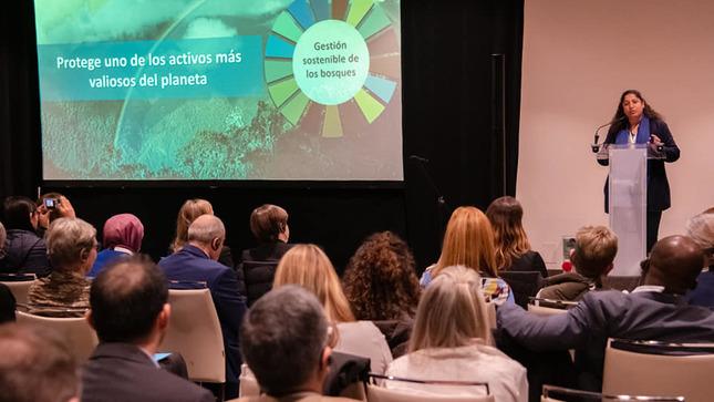 COP25: Perú apuesta por una mayor ambición para enfrentar el cambio climático al 2030