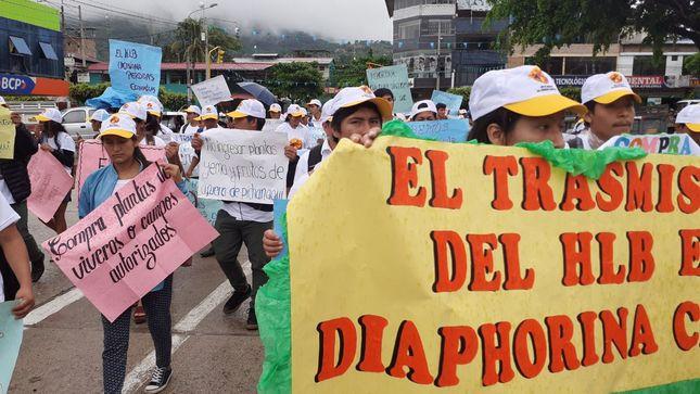 Productores de la selva central comprometidos en la lucha contra el Dragón Amarillo