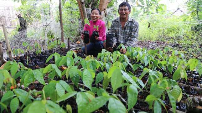 Se fortalecen intervenciones para proyectos de desarrollo productivo en la Amazonía