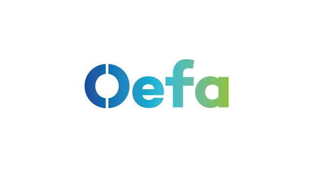 OEFA supervisa fuga de gas de camión cisterna en Cieneguilla