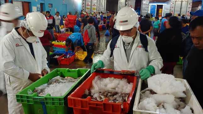 Produce decomisa más de 273 toneladas de recursos marinos obtenidos y comercializados ilegalmente