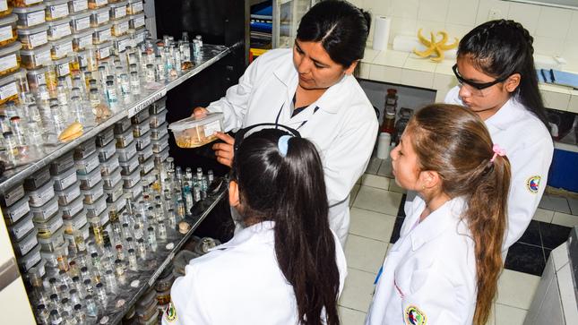 Imarpe: Ciento veinte niñas a nivel nacional se convirtieron en investigadoras por un día
