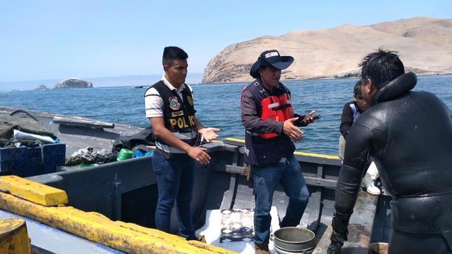Produce rescata 760 kilos de conchas de abanico frente a la Isla de San Lorenzo