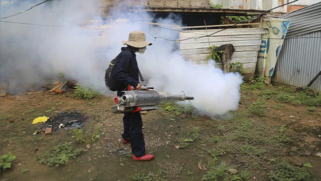 Minsa fortalece acciones contra dengue y otras arbovirosis en 14 regiones priorizadas