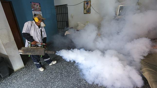 Minsa fumigará cerca de seis mil casas para luchar contra el dengue en la zona norte de Lima