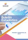 Vista preliminar de documento Boletin Estadístico
