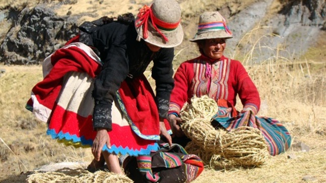 Ministerio de Cultura traduce información y mensajes preventivos sobre el COVID-19 en 21 lenguas originarias y variantes