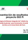 Vista preliminar de documento Proyecto N° 053_PI - Presentación de Resultados