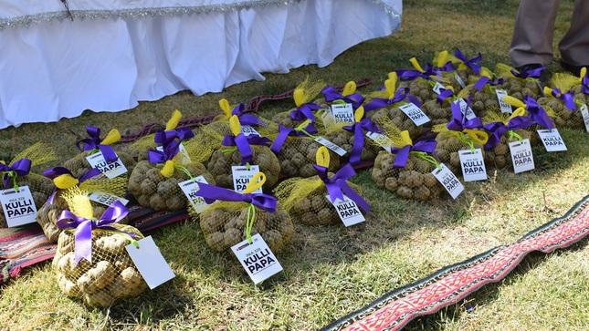 Perú posee 41 variedades de papa con alta calidad genética y capacidad nutritiva