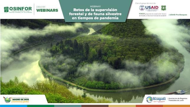 Segundo webinar de OSINFOR expuso los retos futuros en materia de supervisión forestal