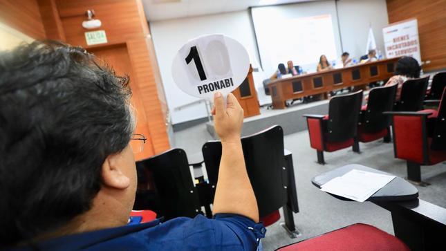 Pronabi subasta 5 inmuebles por más de 2.5 millones de soles